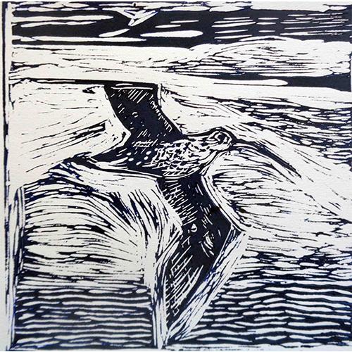 BA Breen_Flying Curlew